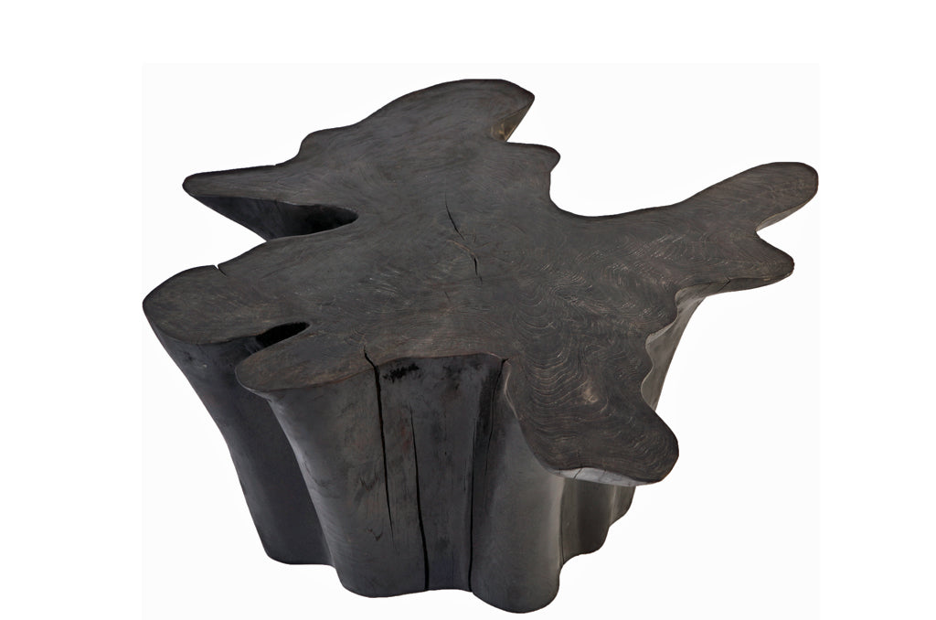 Star Black Teak Root Coffee Table 3 - Dyag East