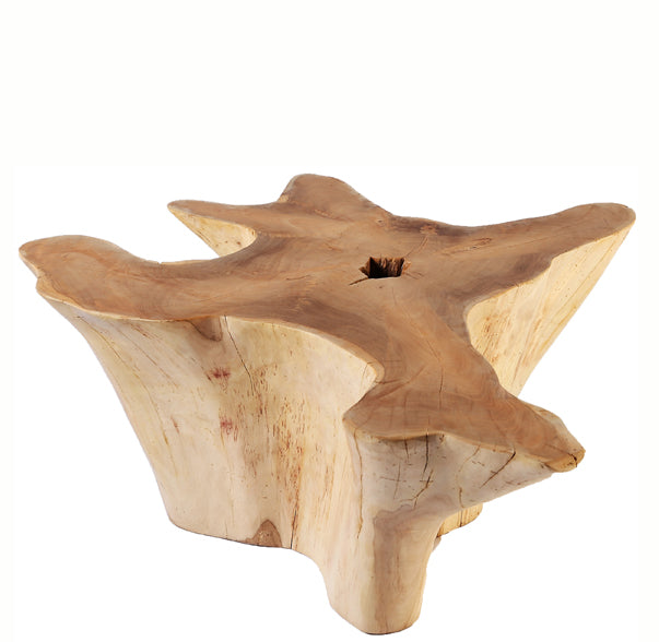 Star Teak Root Coffee Table 4 - Dyag East