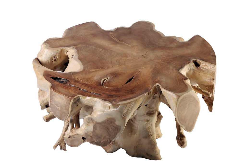 "Round  36""D Teak Root Coffee Table"