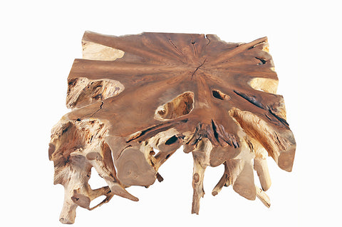 Square Teak Root Coffee Table - Dyag East