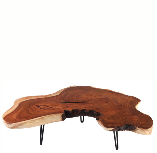 Lake Living Edge Coffee Table 4 - Dyag East