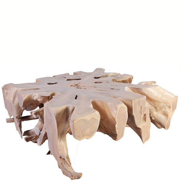 Bleach White Organic Teak Root Coffee Table 1