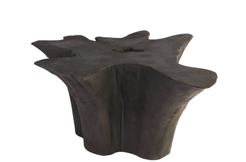 Black Burnt Organic Teak Root Accent table or Small Coffee Table 52