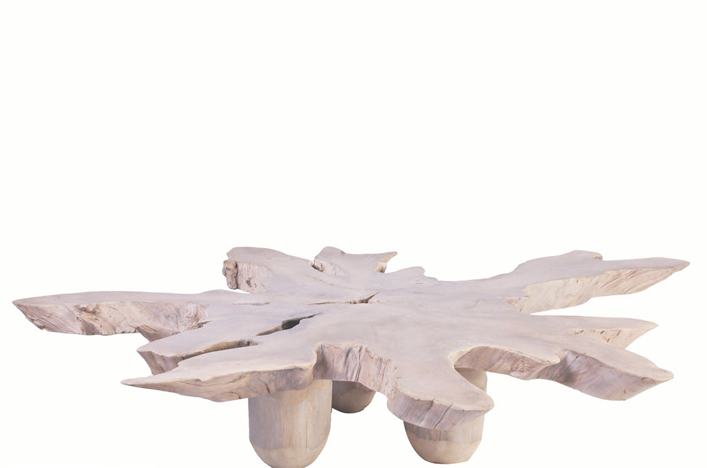 Bleached White Organic Teak Root Coffee Table 87