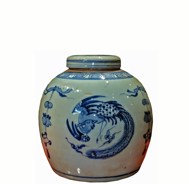 Z-Blue and White Porcelain Phoenix Ginger Jar With Lid - Dyag East