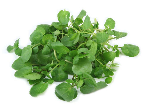 Watercress 1.5lbs.