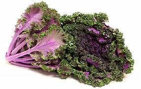 Kale Oriental/ Purple - Each