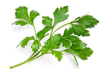 Parsley Flat Leaf/Italian - Each