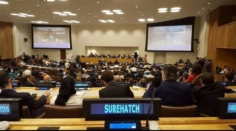 Surehatch at the United Nations