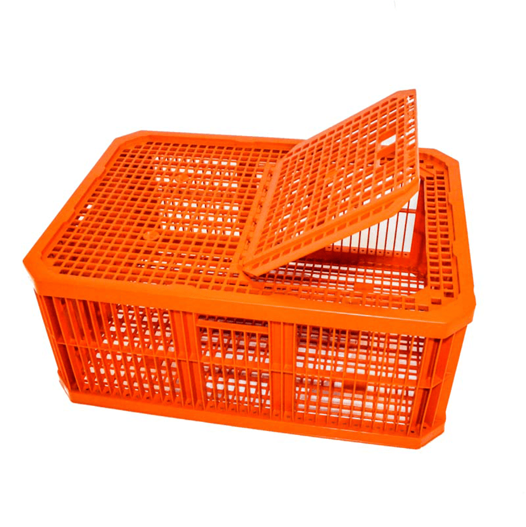 Live Bird Transport Crate (10 birds)