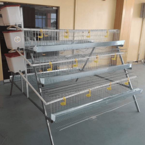 Imali 96 Bird Econo Egg Laying Cage