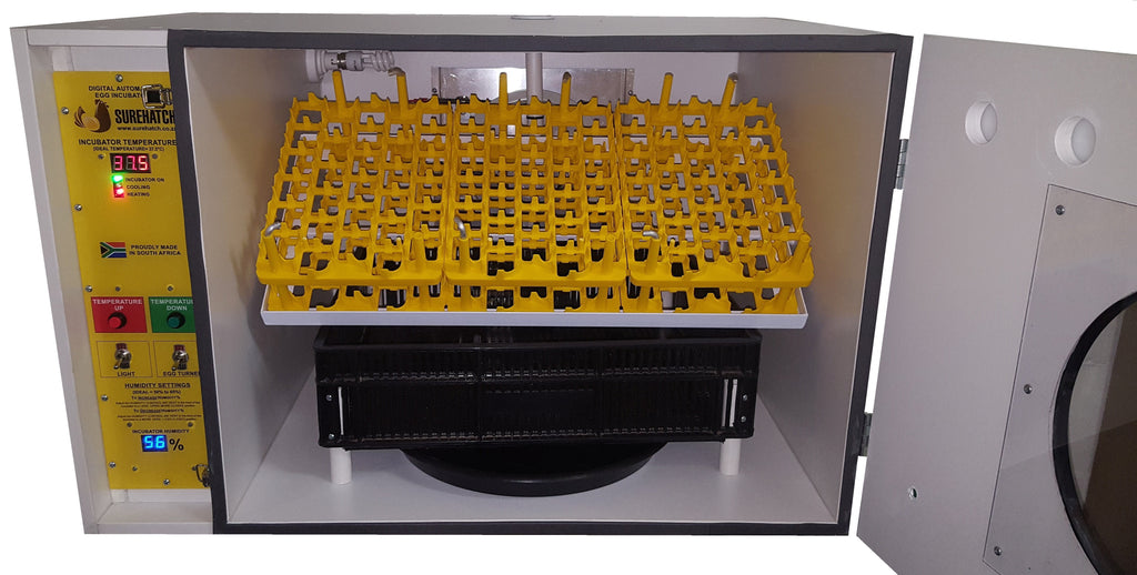Chicken Egg Incubator for sale