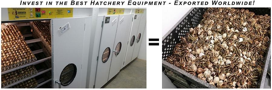 Invest in the best hatchery equipment