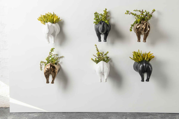 RHINO WALL PLANTER HEAD / TAIL