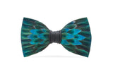 Chisolm Feather Bow Tie