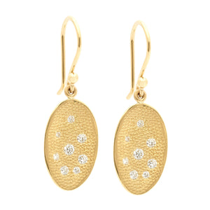 Stardust Organic Oval Hook Earrings