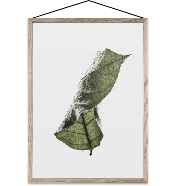 Floating Leaves Transparent Print 04