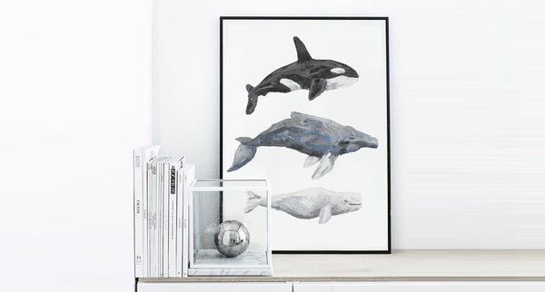 The 3 Whales PRINT