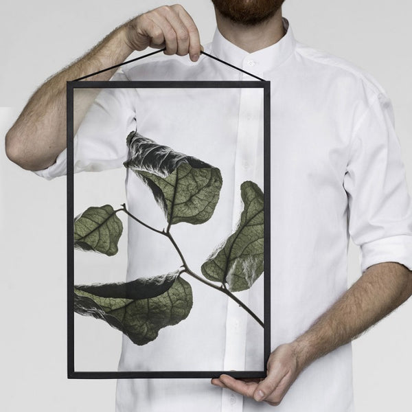 Floating Leaves Print