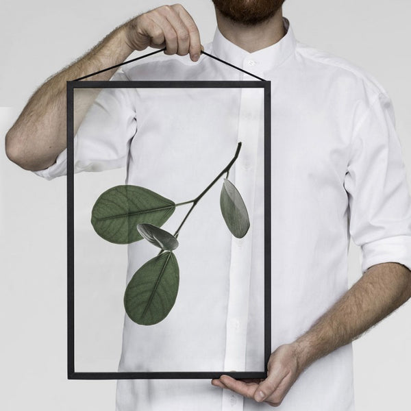 Floating Leaves Transparent Print 05