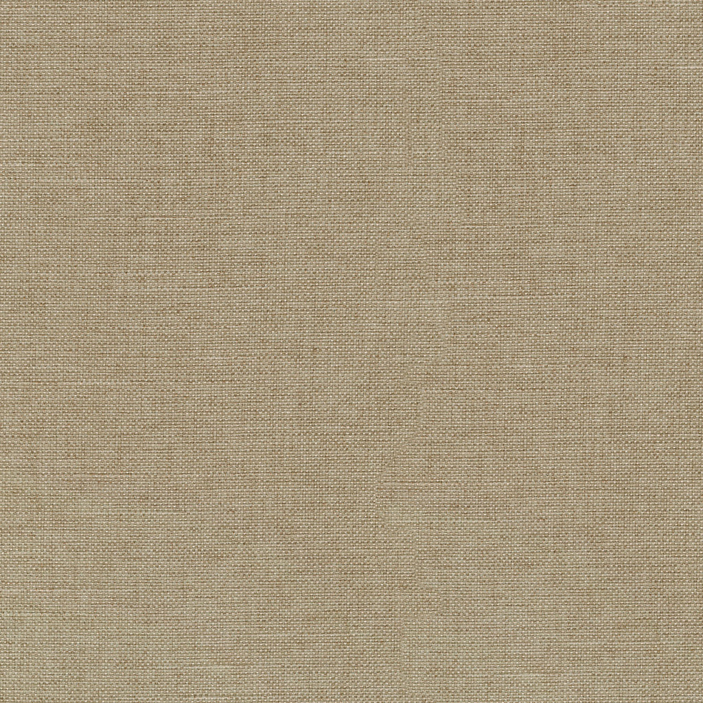 P/K Lifestyles Reba - Linen 409115 Fabric Swatch