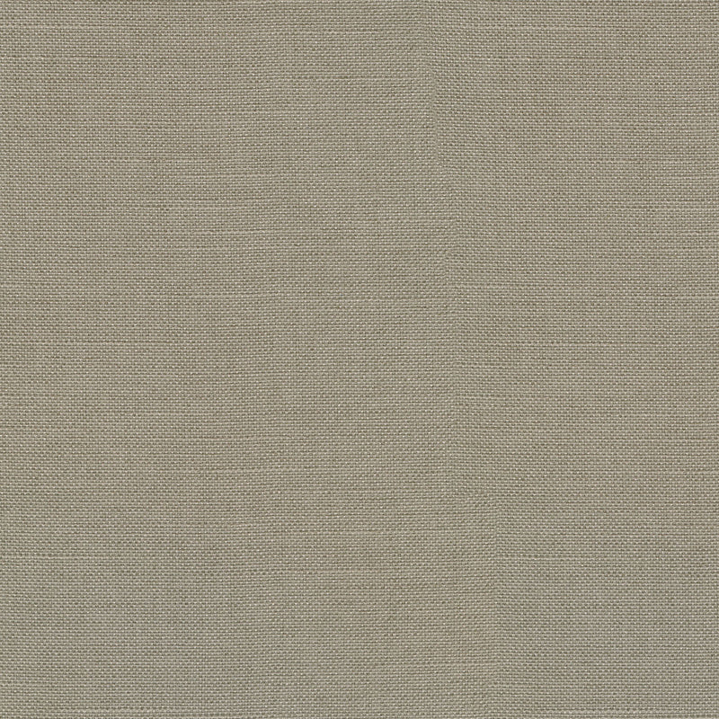 P/K Lifestyles Reba - Taupe 409113 Fabric Swatch