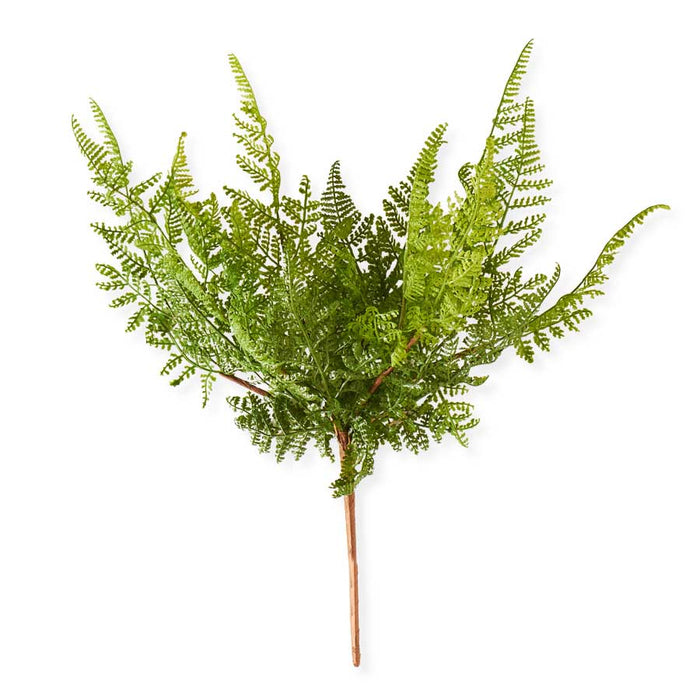 Fern Spray 16""