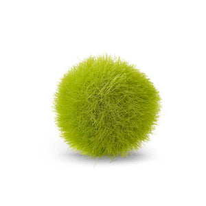 "2"" Fuzzy Moss Balls - Bag of 12"
