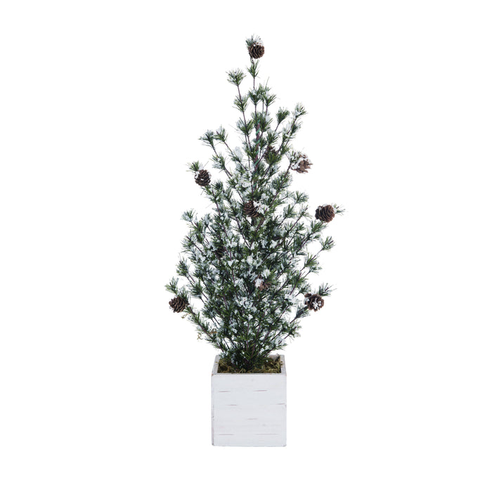 Frosted Christmas Tree in Birch Box