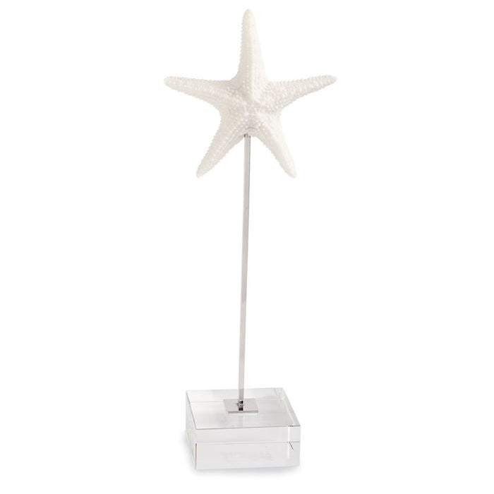 Starfish on Lucite Sitter
