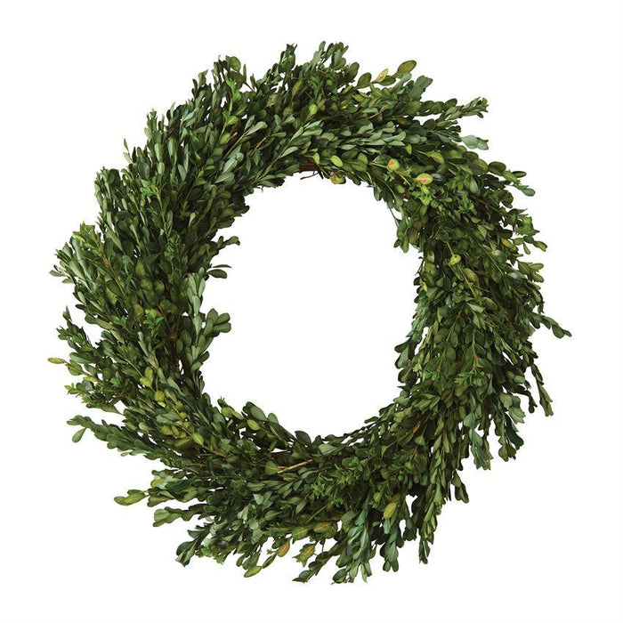 Preserved boxwood wreath - various