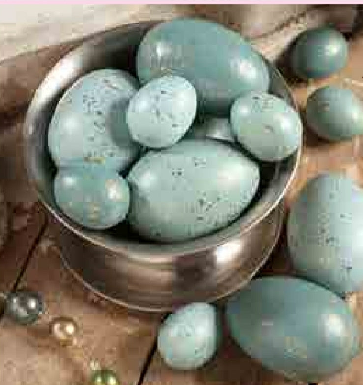 Turquoise Egg With Gold Flecks