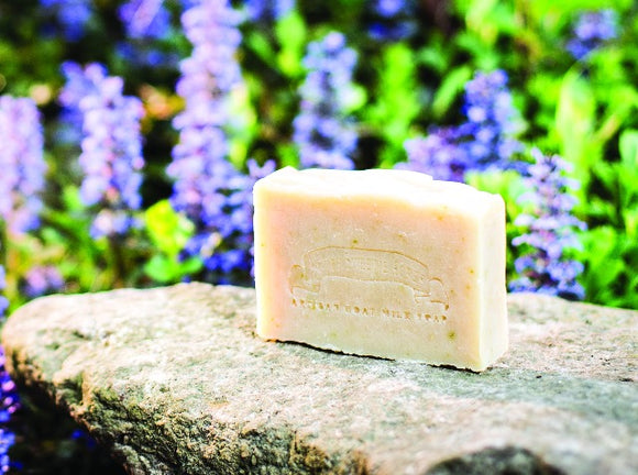 Jewelweed Goat Milk Soap:Honey Sweetie Acres