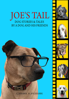 Joes...Stories by Joe