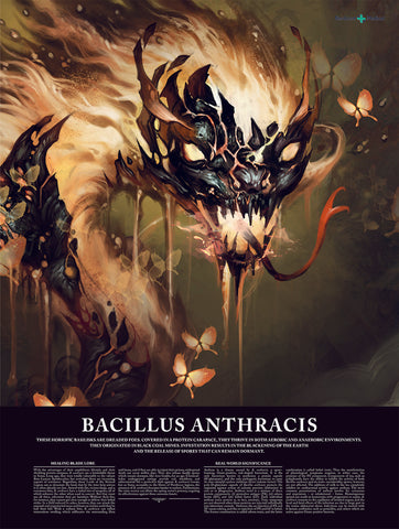 Bacillus Anthracis (Anthrax) Poster