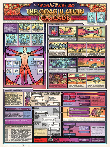 Coagulation Cascade poster