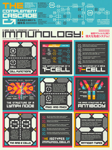 Basic Guide to Immunology Poster