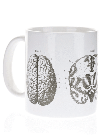 Anatomical Brain Mega Mug