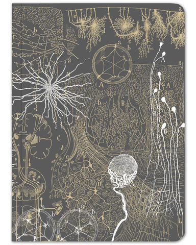 Vintage Neurons Notebook