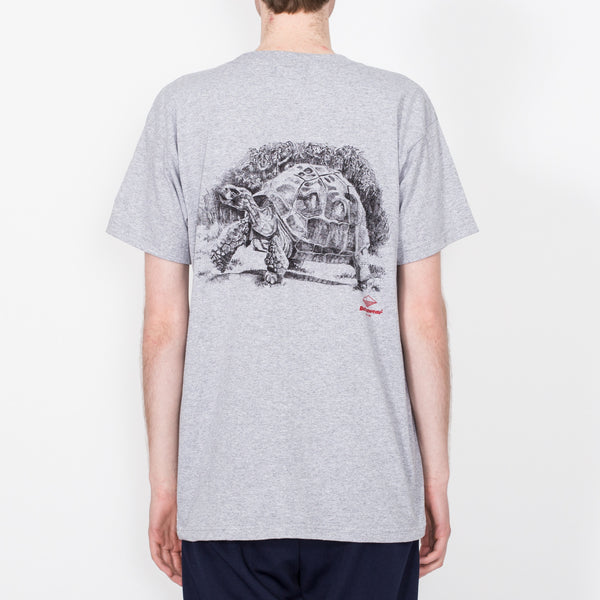 Tortoise Tee, Heather Grey