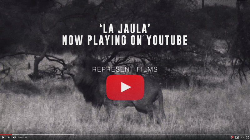 Represent Films 'La Jaula' - Now Playing on YouTube