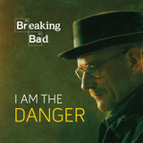 Breaking Bad | I Am the Danger | Book
