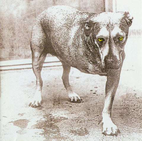 Alice In Chains | Alice In Chains | CD