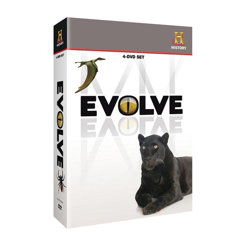 History Store | Evolve | DVD