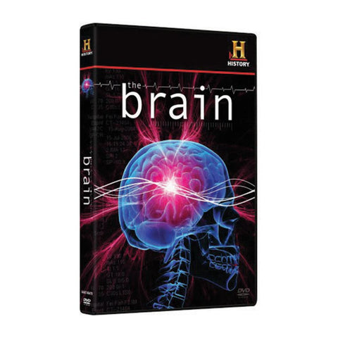 History Store | The Brain | DVD
