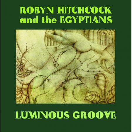 Robyn Hitchcock | Luminous Groove | CD Set