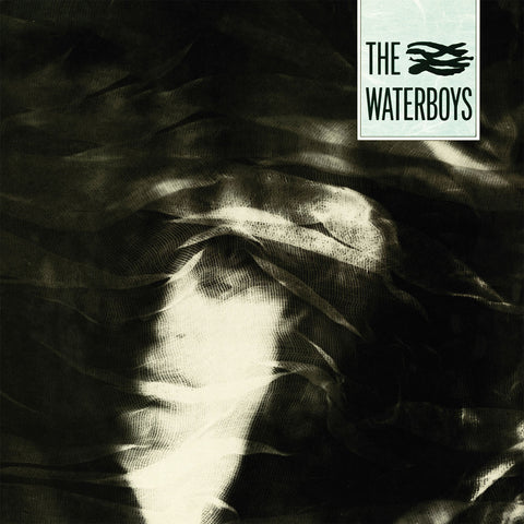 The Waterboys | The Waterboys | Vinyl LP