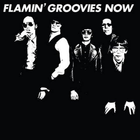 Flamin' Groovies | Now | 180g Vinyl