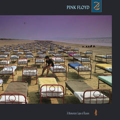 Pink Floyd | A Momentary Lapse Of Reason | 180g Vinyl LP