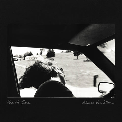Sharon Van Etten | Are We There | Vinyl LP